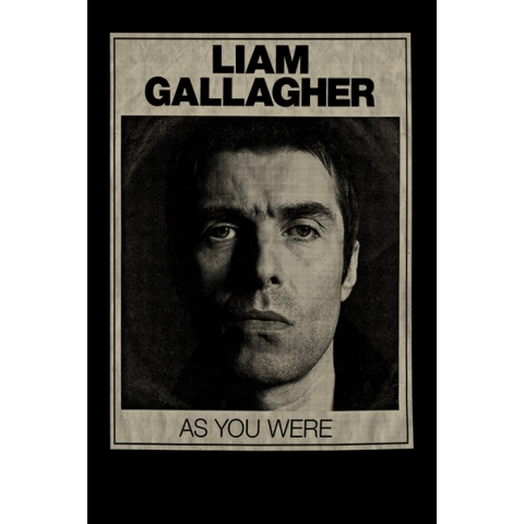 Camiseta Liam Gallagher